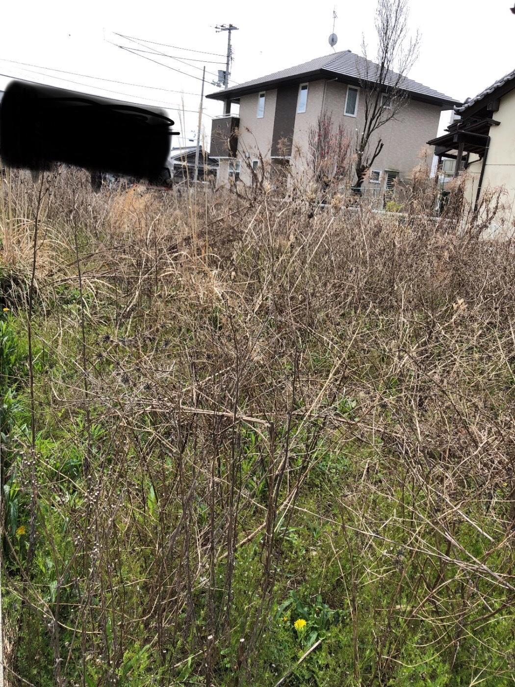 高松 草刈り